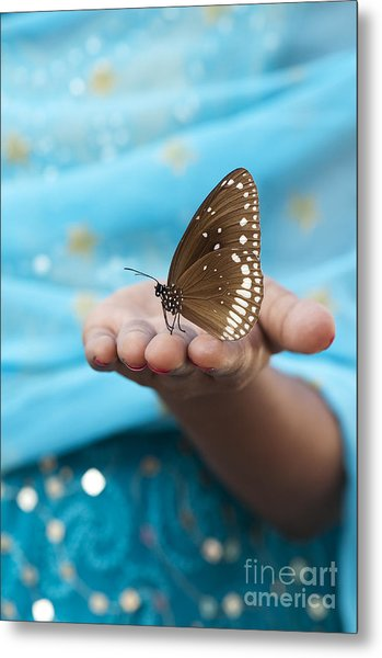 Common Crow Butterfly Metal Print