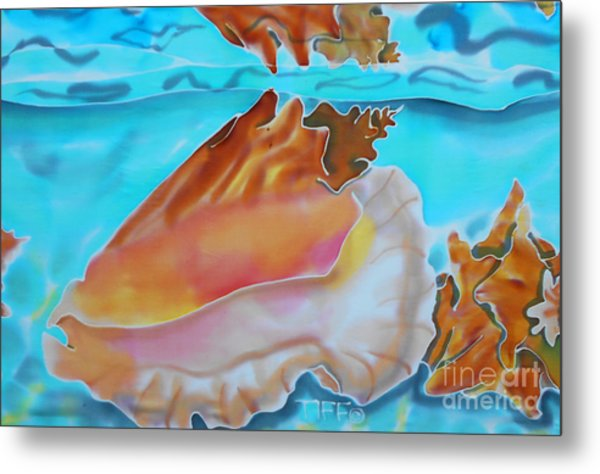 Conch Shallows Metal Print