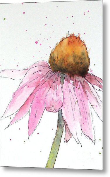 Coneflower 1 Metal Print