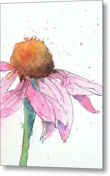 Coneflower 2 Metal Print