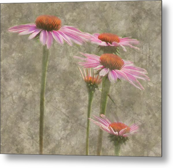 Metal Print featuring the digital art Coneflowers by Grace Dillon