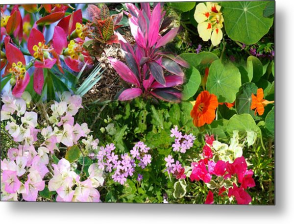 Confluent Flowers 7 Metal Print