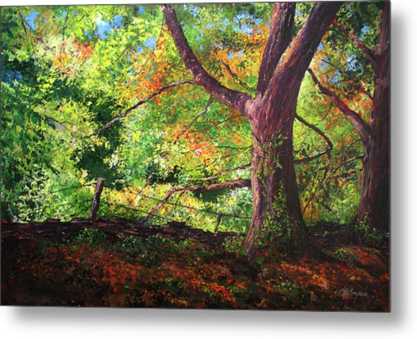 Connecticut Autumn Metal Print