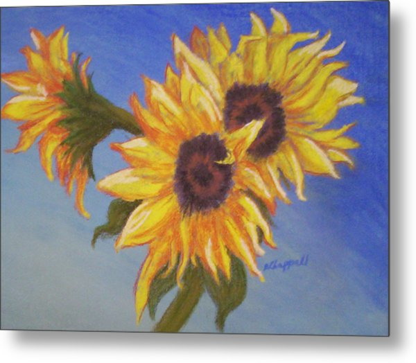 Connies Sunflowers Metal Print