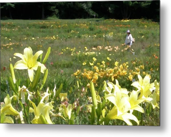 Consider The Lilies Of The Field Metal Print