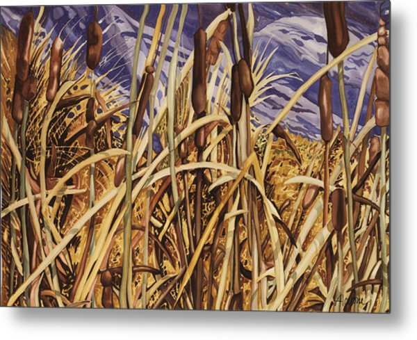 Contemplating Cattails Metal Print