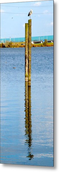 Contemplation Metal Print by Karen Weetman