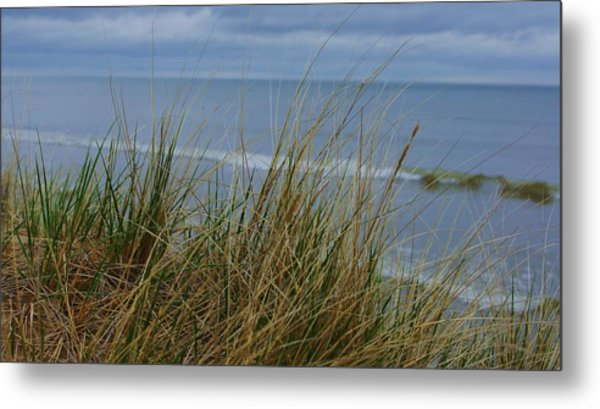 Cool Day At The Beach Metal Print by Rosemarie E Seppala