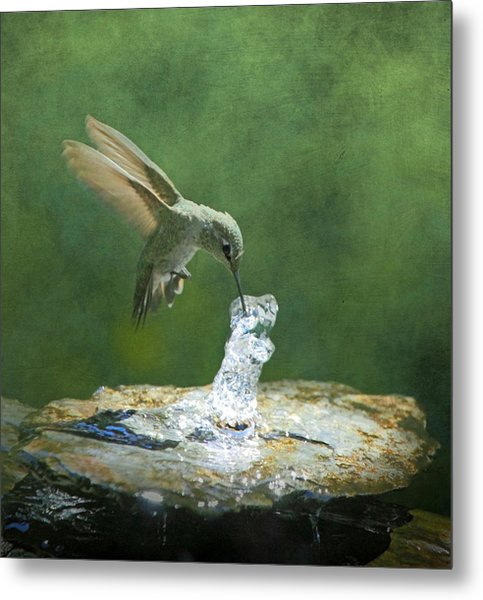 Cool Refreshment Metal Print