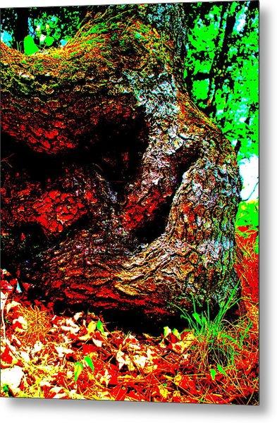 Coos Canyon 228 Metal Print