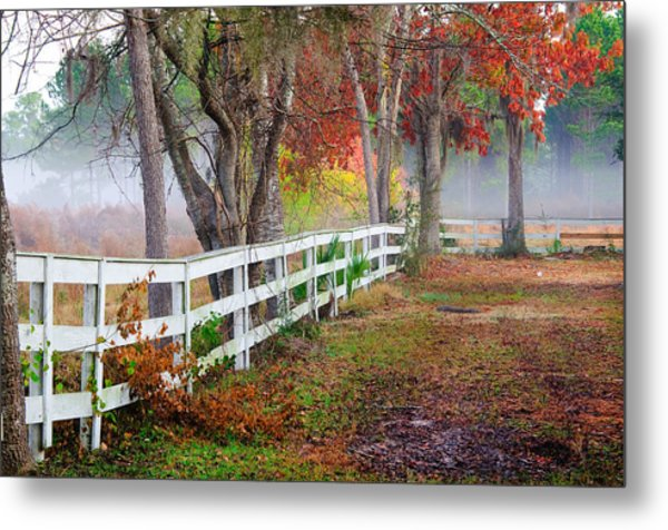 Coosaw Horse Fence Metal Print