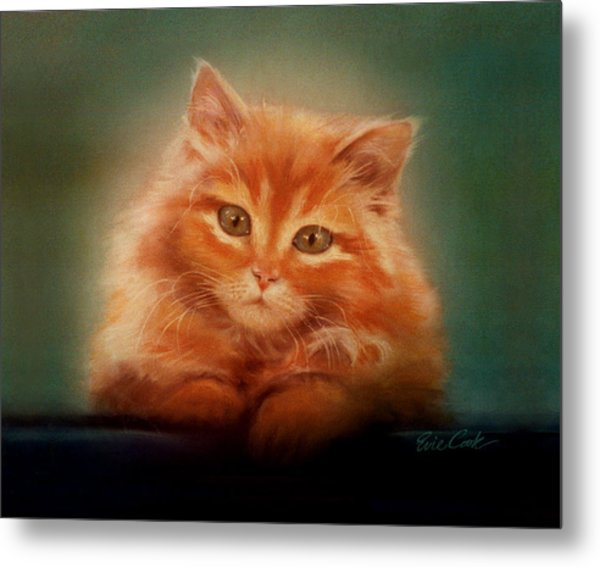 Copper-colored Kitty Metal Print