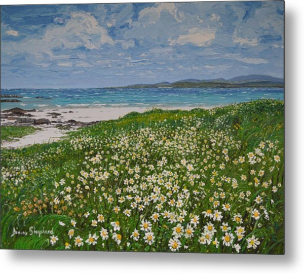 Coral Strand On A Windy Day Connemara Metal Print