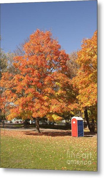 Corning Fall Foliage - 4 Metal Print