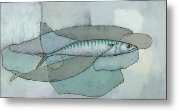 Cornish Mackerel Metal Print