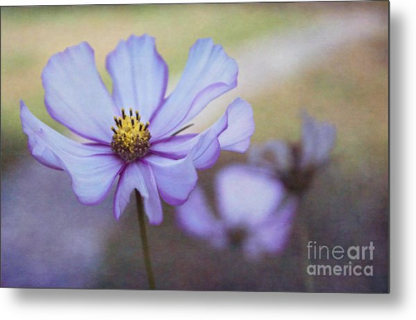 Cosmos Dream Metal Print