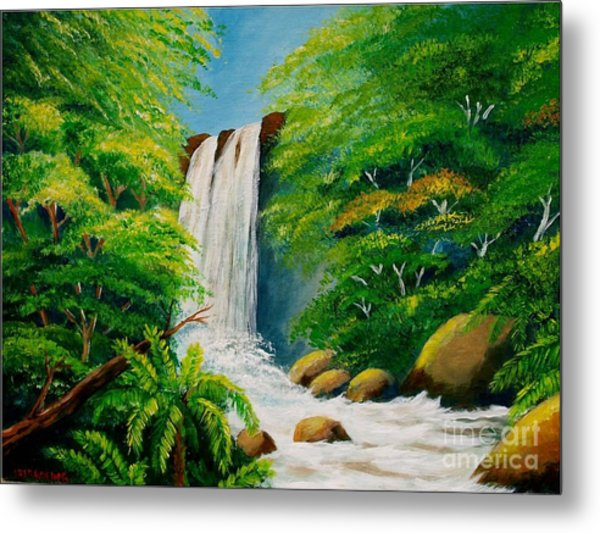 Costa Rica Waterfall Metal Print