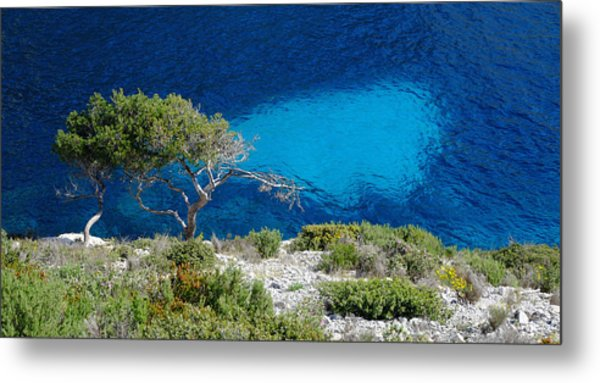 Pine Trees At Azure Waters Metal Print