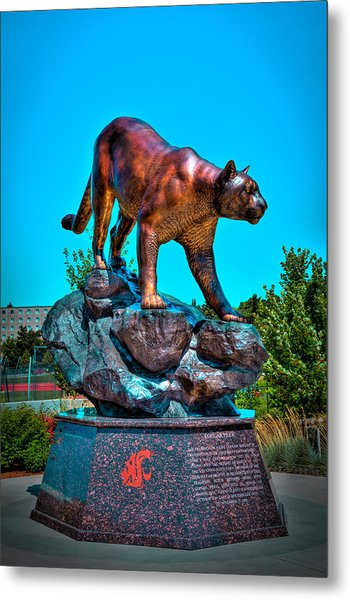 Cougar Pride Sculpture - Washington State University Metal Print
