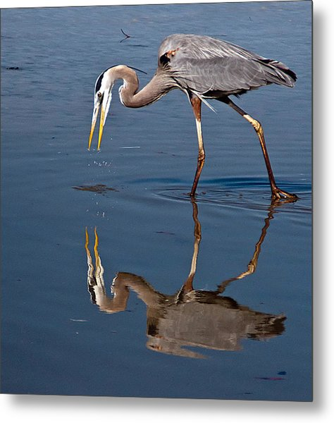 Could That Be How I Really Look Metal Print by Geraldine Alexander