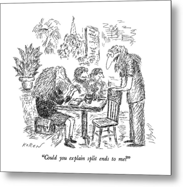 Could You Explain Split Ends To Me? Metal Print