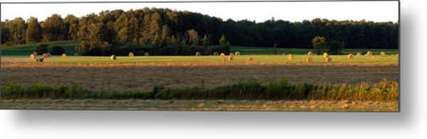 Country Bales  Metal Print