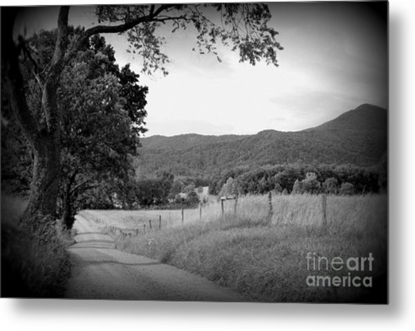 Country Bliss Metal Print