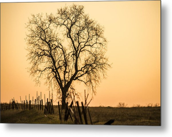 Country Fence Sunset Metal Print
