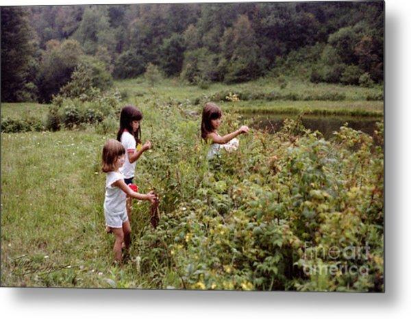 Country Girls Picking Wild Berries Metal Print
