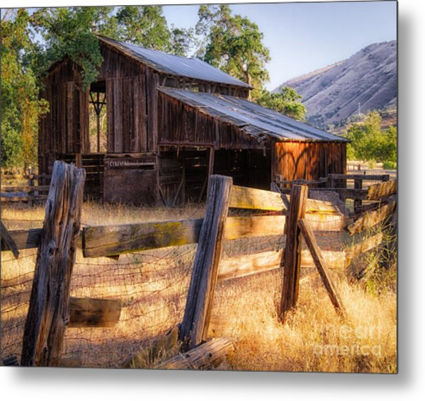 Country In The Foothills Metal Print