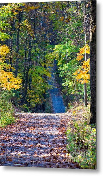 Country Lane Metal Print by Deb Kline