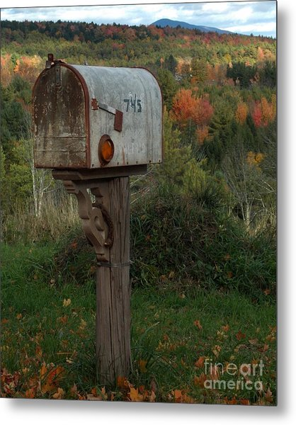 Country Mail Box Metal Print