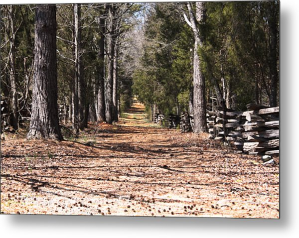 Country Road Metal Print by Arthur Warlick