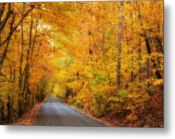Country Road In Fall Metal Print