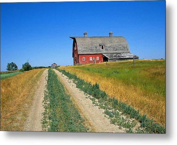 Country Road In Saskatchewan Metal Print by Buddy Mays