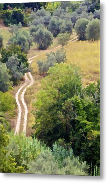 Country Road Of Tuscany Metal Print