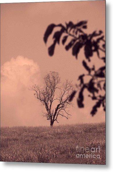 Country Solitude  Metal Print