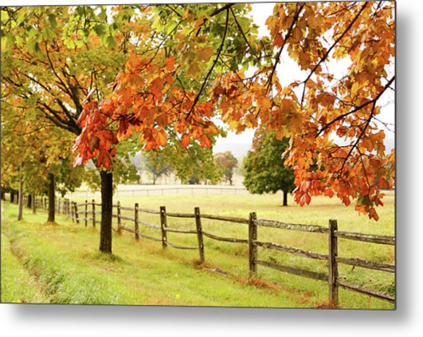 Countryside Landscape With Fence Metal Print by Jena Ardell