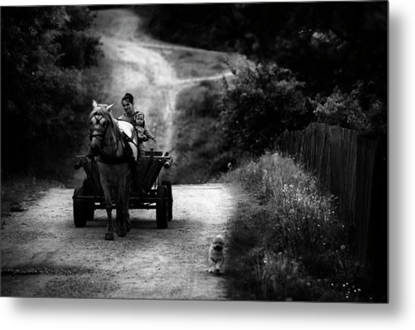 Countryside Life Metal Print