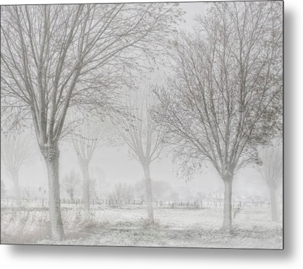 Covered With A White Quilt Metal Print