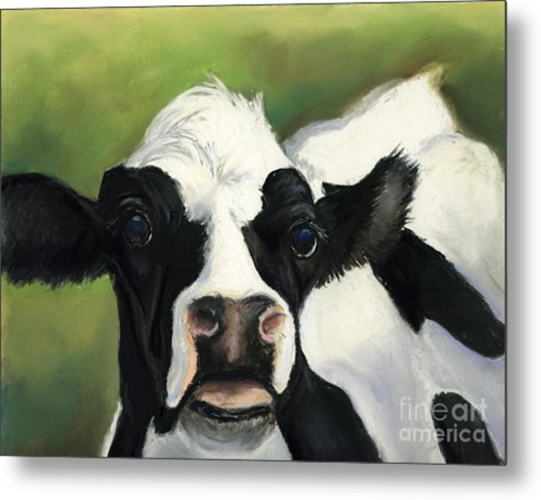 Cow Closeup Metal Print by Charlotte Yealey