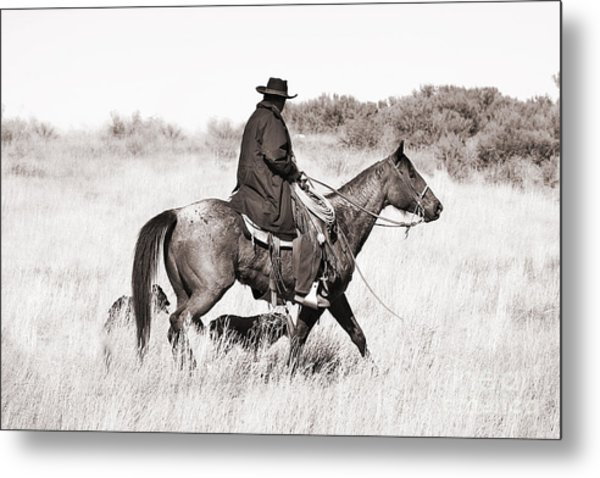 Cowboy And Dogs Metal Print