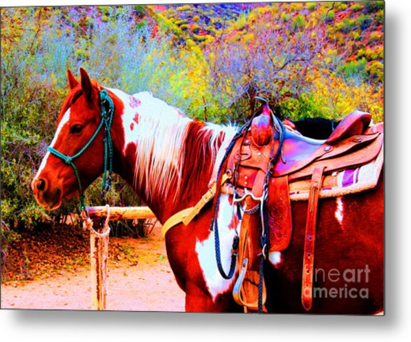 Cowgirl Up Metal Print
