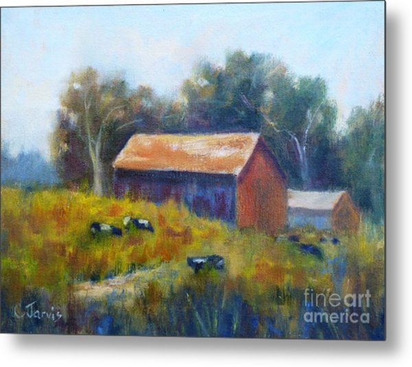 Cows By The Barn Metal Print