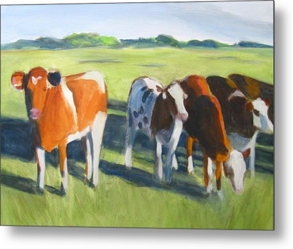 Happy Cows  Metal Print