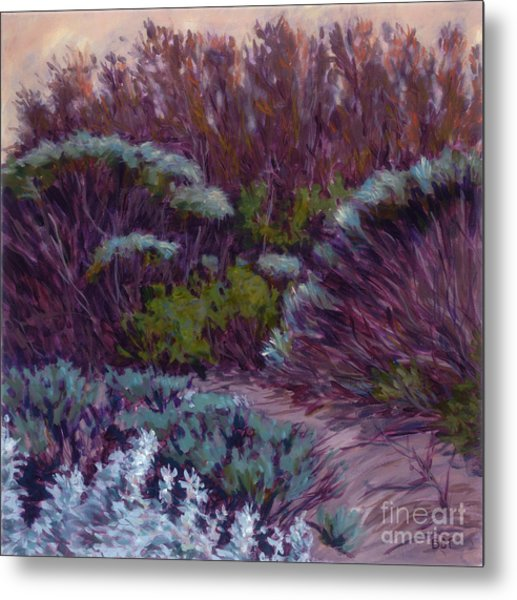 Coyote Brush And Willows Metal Print