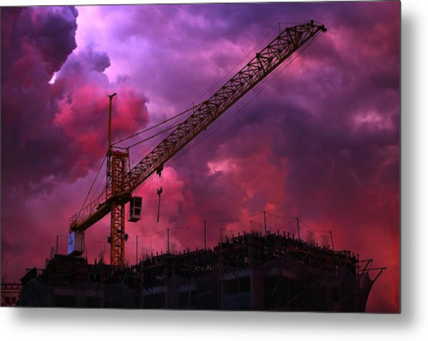 Crane I Metal Print by Felipe Djanikian