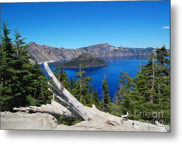 Crater Lake And Fallen Tree Metal Print