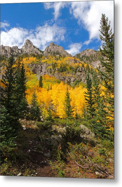 Crater Lake Trail 2 Metal Print by Steve Anderson