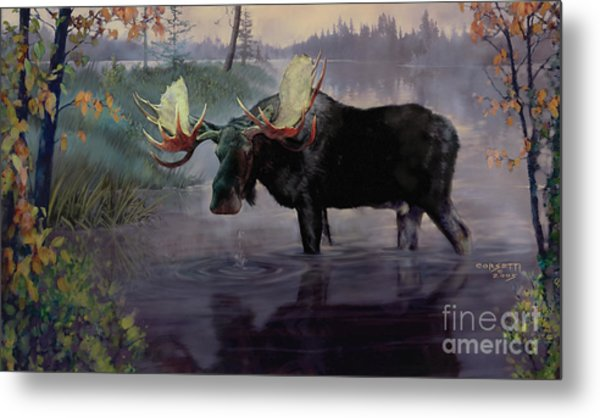 Craven Moose Metal Print